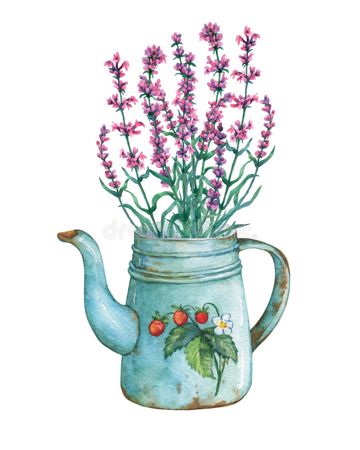 Vintage blue metal teapot with strawberries pattern and bouquet of lavender flowers. stock illustration