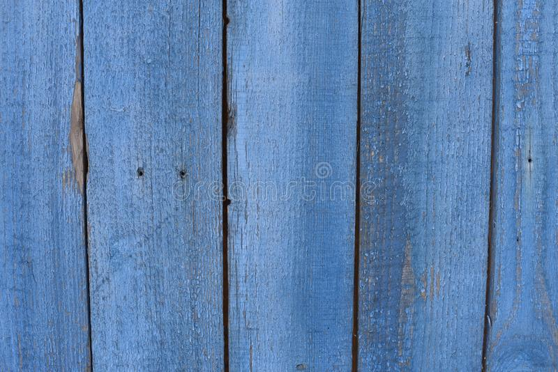 vintage blue painted wood background texture with knots. Blue abstract background or grain texture Copy Space royalty free stock photo