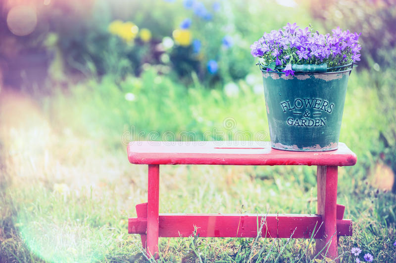 Vintage bucket with garden flowers on red little stool over summer nature background. Outdoor royalty free stock image