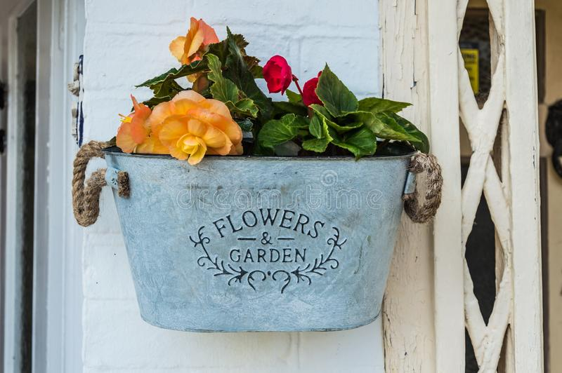 Vintage bucket with garden flowers. In metal provencal pot royalty free stock photography