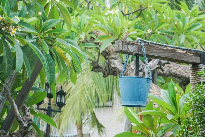 Vintage bucket hang on the water well. Vintage bucket hang on the outdoor water well stock photos