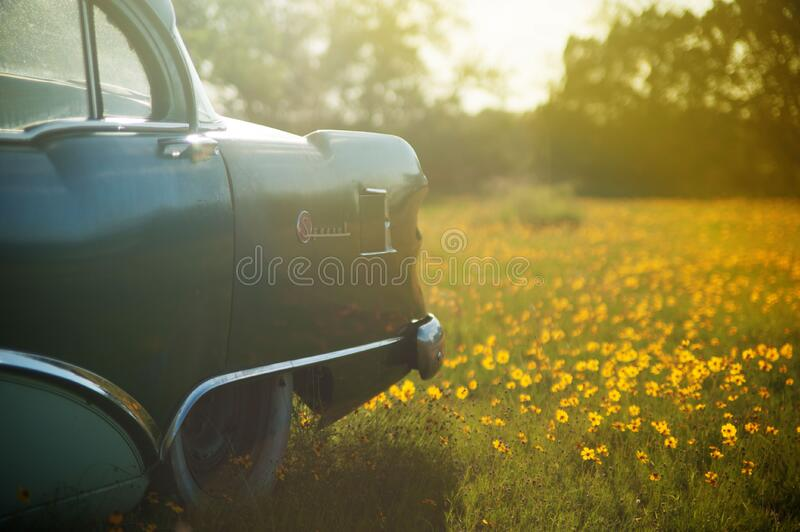 Vintage car in sunny meadow royalty free stock images