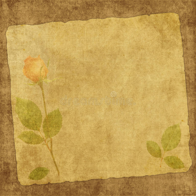 vintage card from old paper and rose stock illustration