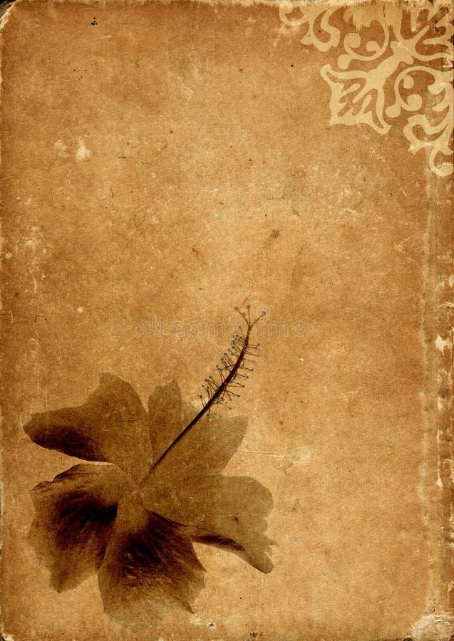 Vintage card series - III stock image