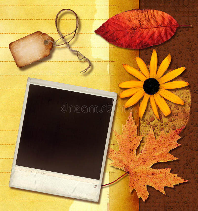 Download Vintage Collage stock photo. Image of nature, grunge - 13435052