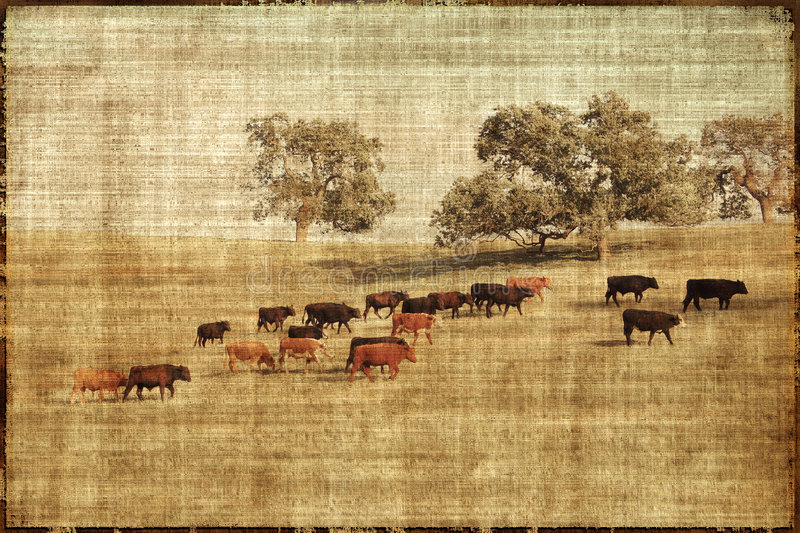 Download Vintage Cows Landscape stock illustration. Image of farmland - 4848030