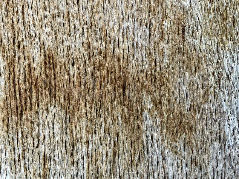 Old cracked wood texture background stock images