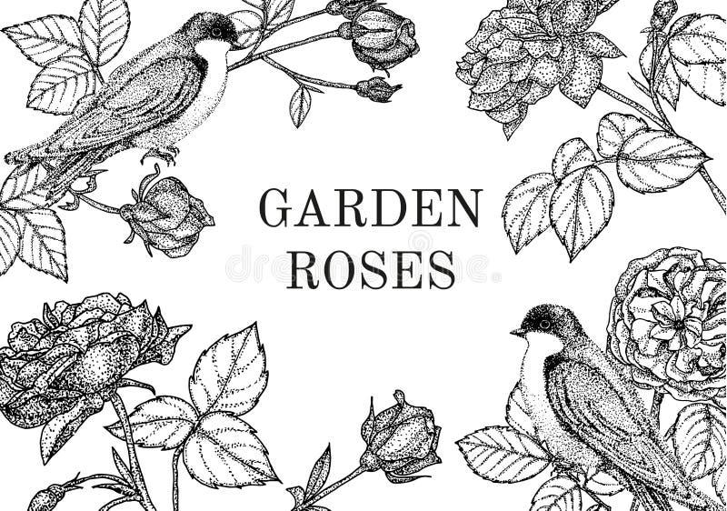 Vintage del vector con los pájaros y las flores Guirnalda floral Ajuste para la invitación de boda, invitación, saludos libre illustration