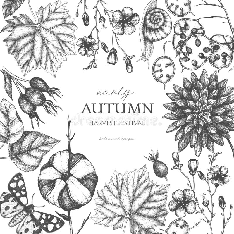 Vintage design with hand drawn leaves, flowers, snails, butterflies, and seeds sketches. Autumn nature background. Vector card tem royalty free illustration