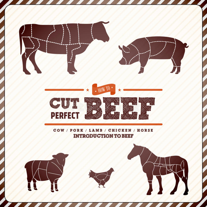 Vintage diagram guide for cutting meat royalty free illustration
