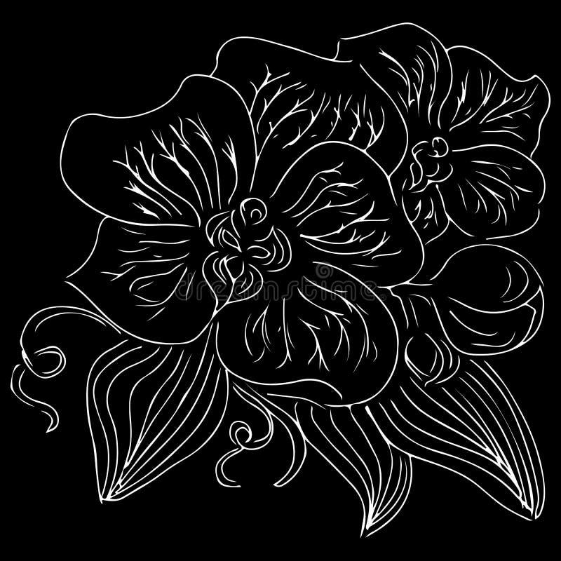 Vintage doodle illustration with white orchid on black background. Line art. Graphic, sketch drawing. Hand drawn botanical. Illustration. Vector orchid. Vector vector illustration