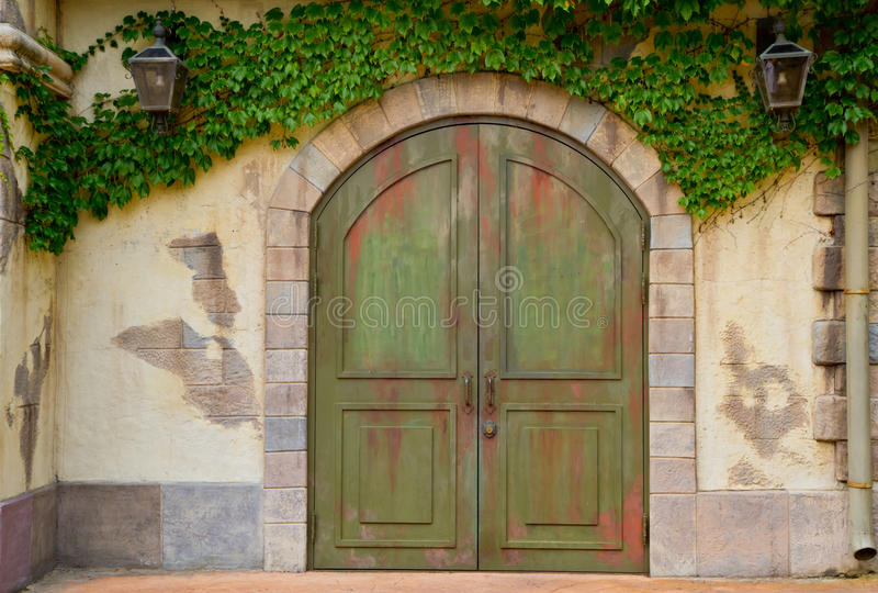 Vintage door. With leafs covered royalty free stock images