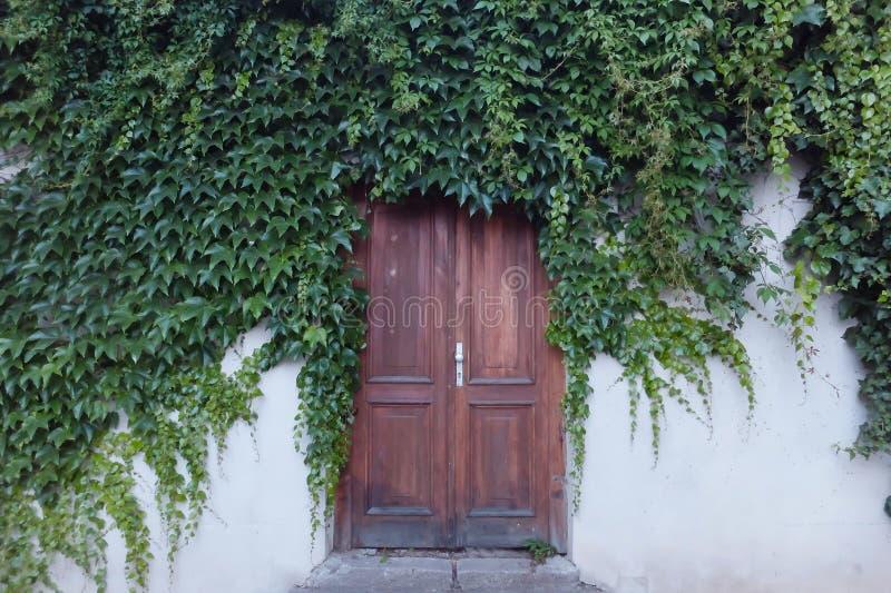 Vintage door royalty free stock image