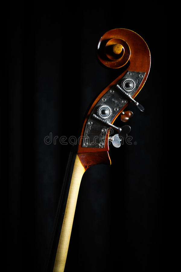 Vintage double bass head royalty free stock image