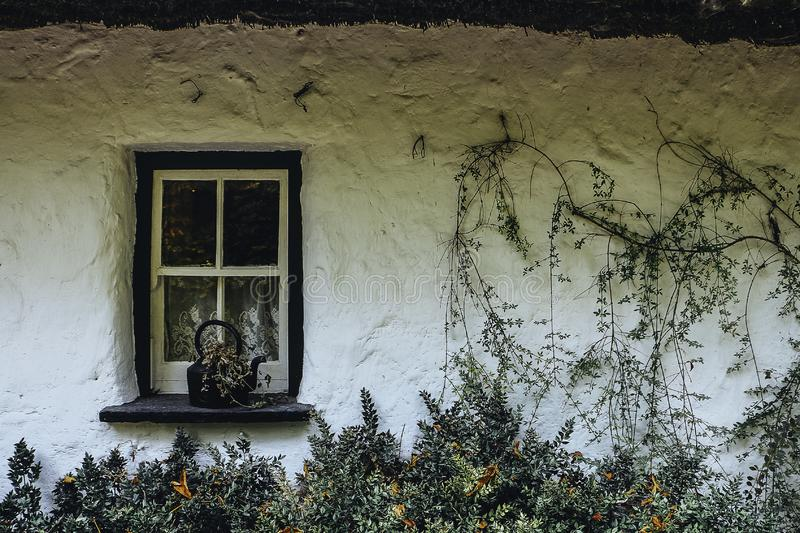 A vintage facade of and old stony shack. With some vines and a cool window royalty free stock images