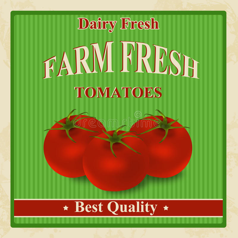 Vintage farm fresh tomatoes poster vector illustration
