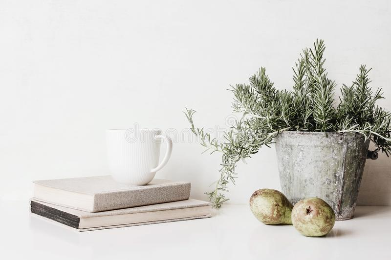 Vintage feminine still life scene. Composition of rosemary herb in old metal flower pot, books, cup of coffee and pears royalty free stock photos