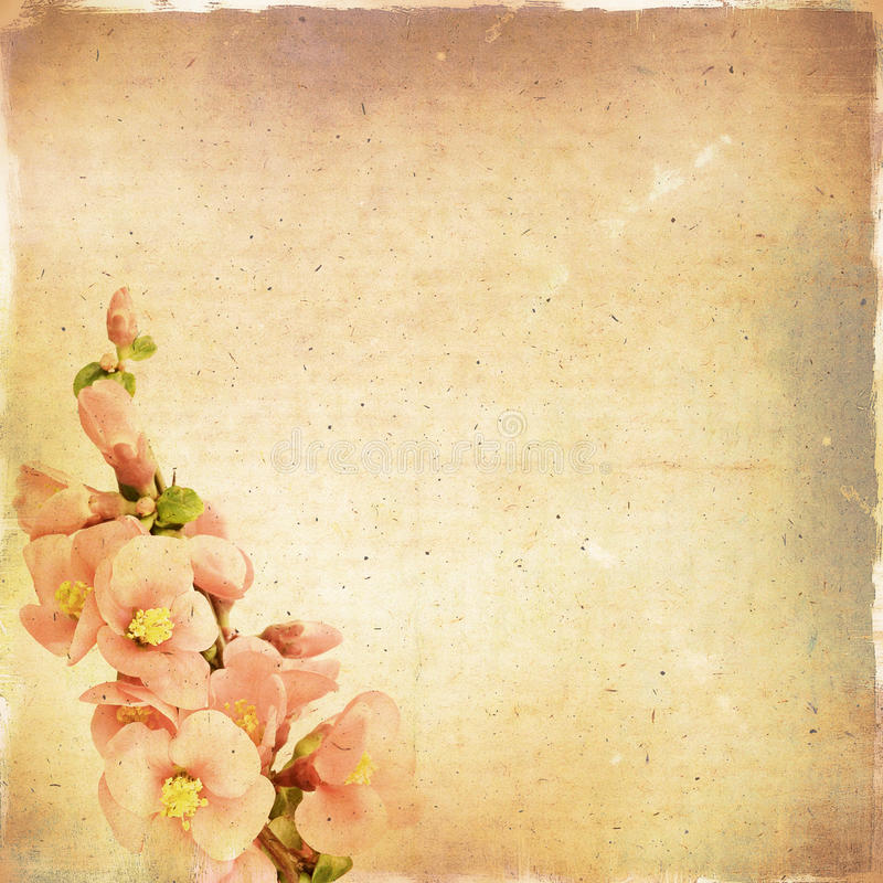 Free Vintage Floral Background Royalty Free Stock Image - 32317236