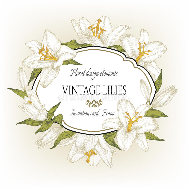 Vintage floral card with a frame of white lilies. vector illustration