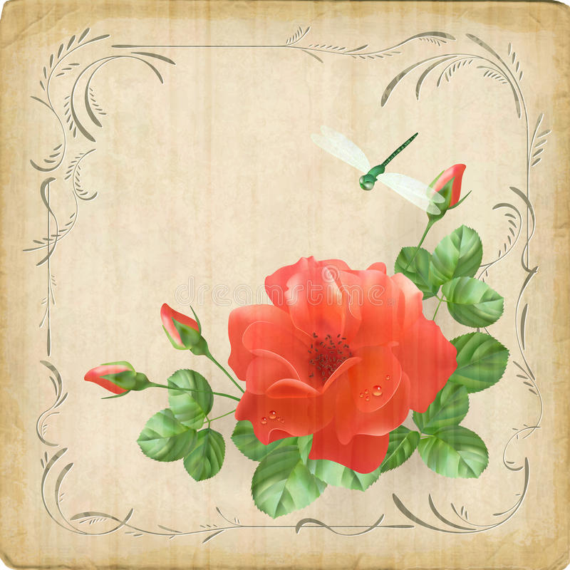 Vintage flower dragonfly retro card border frame stock illustration