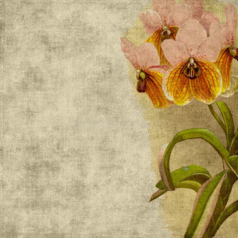 Vintage Flower Scrapbook Background stock photo