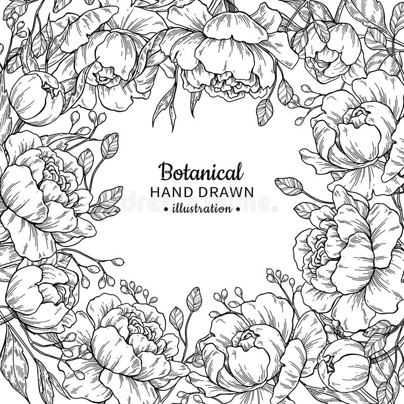 Vintage flower vector frame drawing. Peony, rose, leaves and ber royalty free illustration