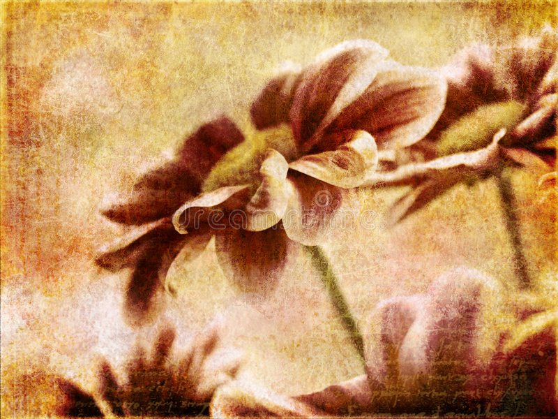 Download Vintage flowers stock image. Image of grunge, colorful - 8783571