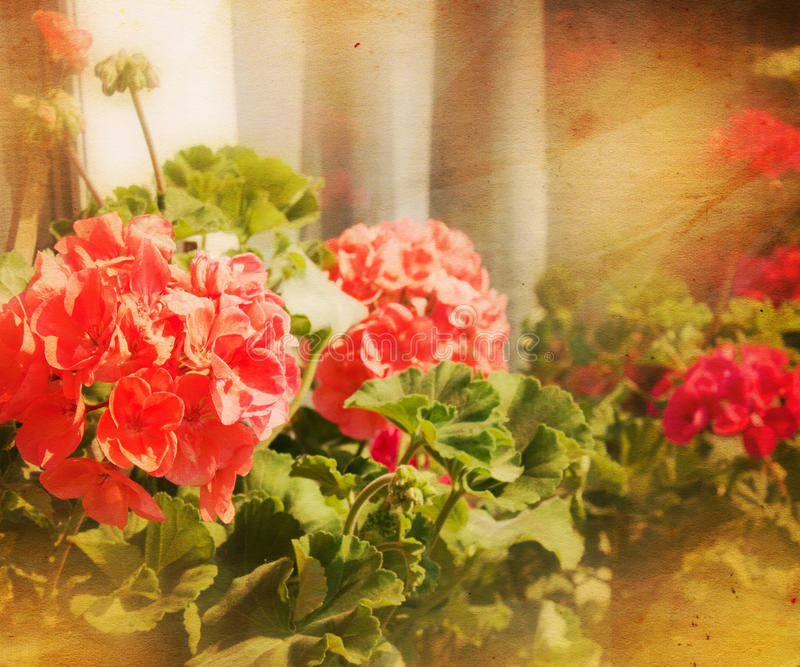 Vintage Flowers Background royalty free illustration