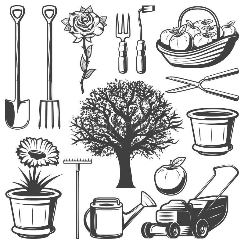 Vintage Garden Elements Collection royalty free illustration