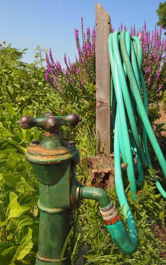 Attractive Download Vintage Garden Spigot Stock Photo. Image Of Summer, Faucet    75109068