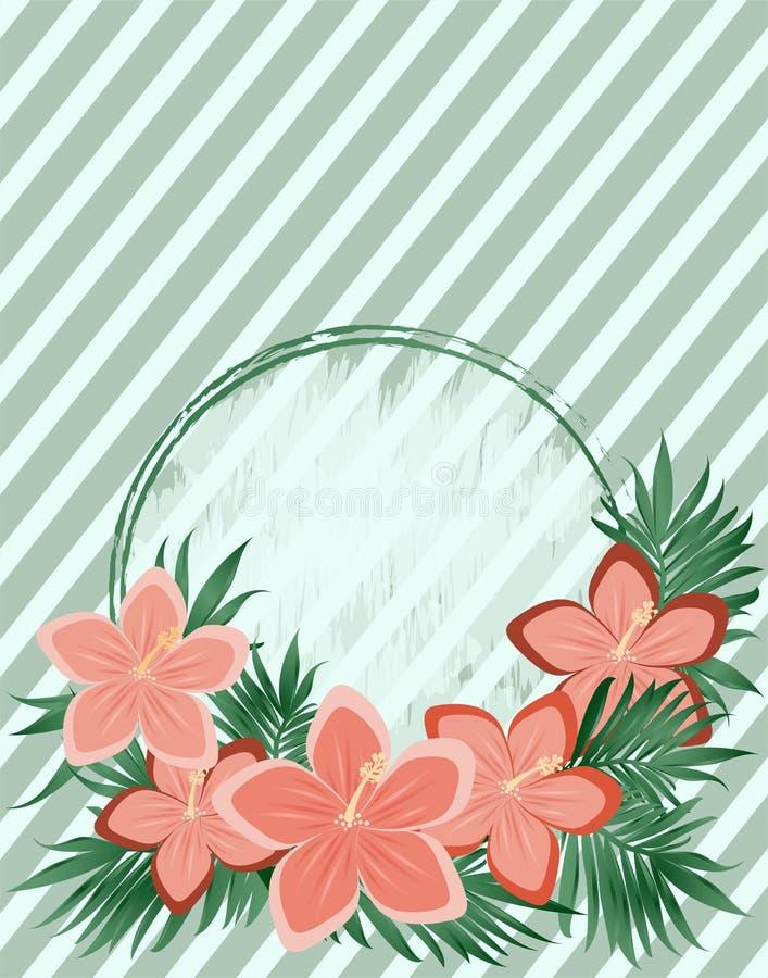 Vintage gift card hibiscus flowers, vector. Illustration stock illustration
