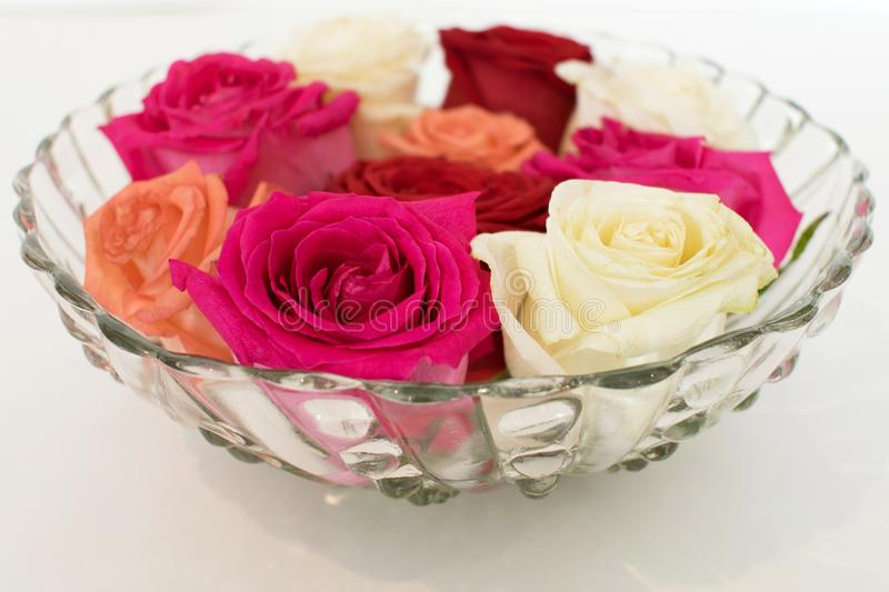 A vintage glass bowl filled with colored rose blossoms. stock photography