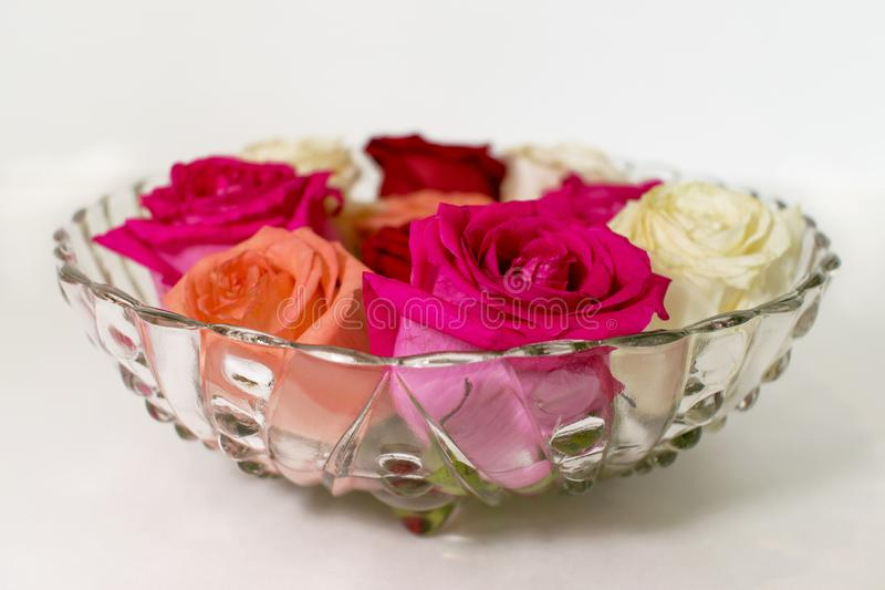 Vintage glass bowl filled with colored roses royalty free stock photo