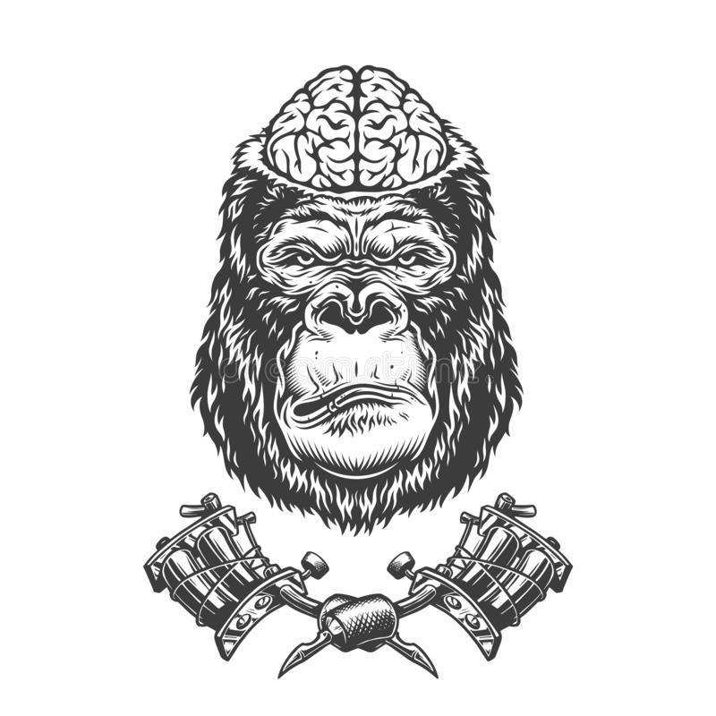 Vintage gorilla head with human brain stock illustration