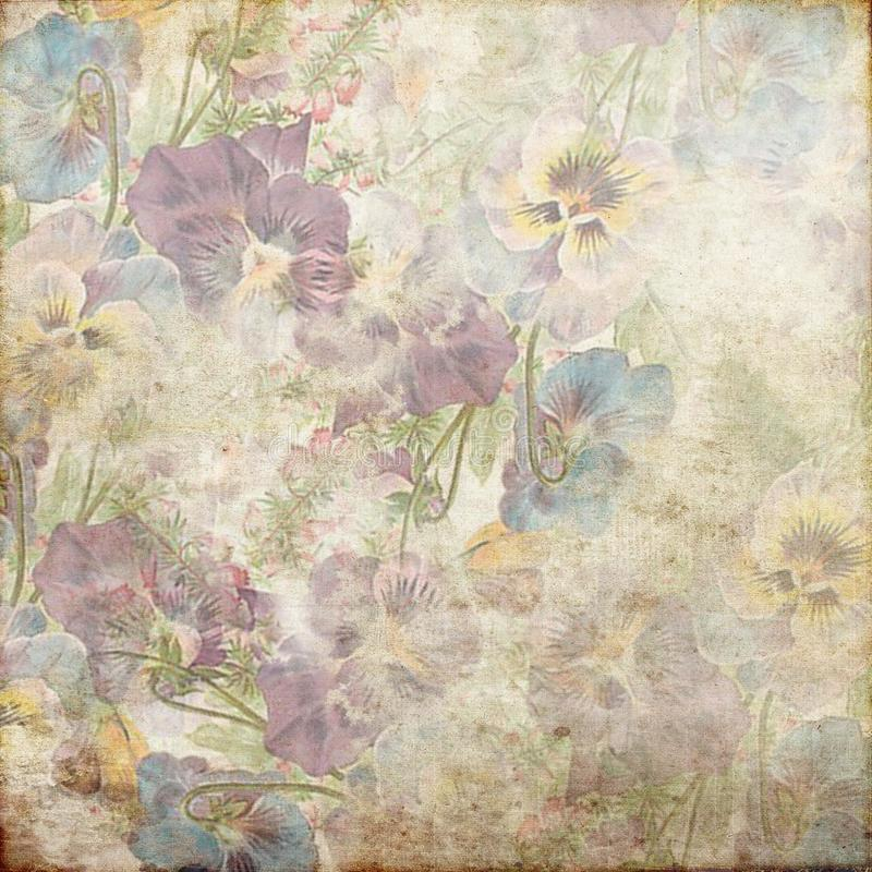 Vintage Grunge Background Pansy 136. Vintage grunge shabby background with flowers stock photography