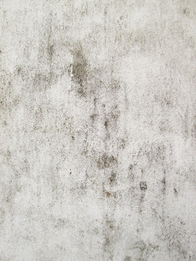 Vintage or grungy white background of natural cement or stone old texture as a retro pattern wall. It is a concept, conceptual or stock photography