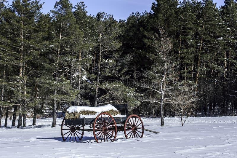 Vintage Hay Wagon In Snow Royalty Free Stock Image