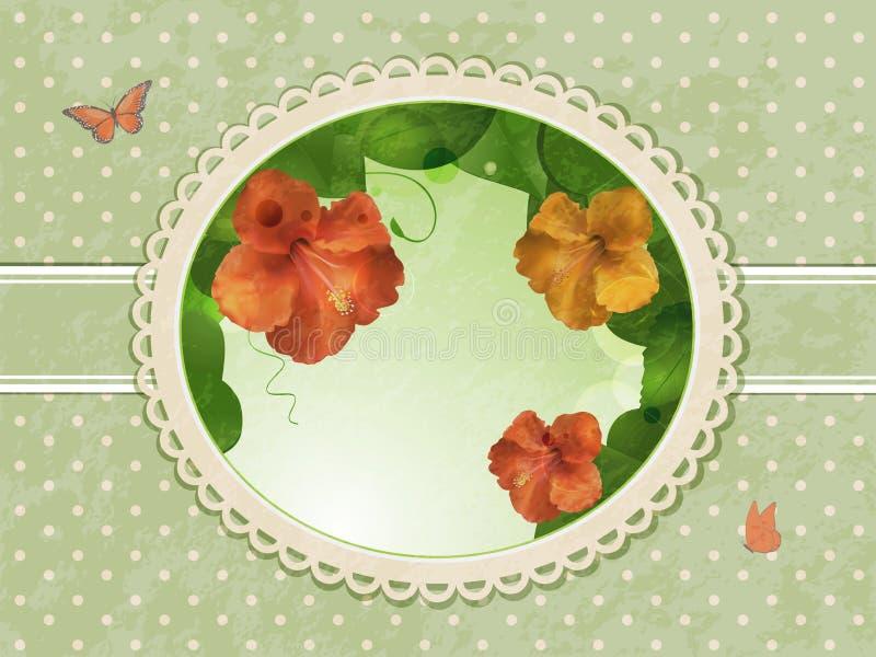 Download Vintage hibiscus border stock vector. Illustration of stamen - 23560830