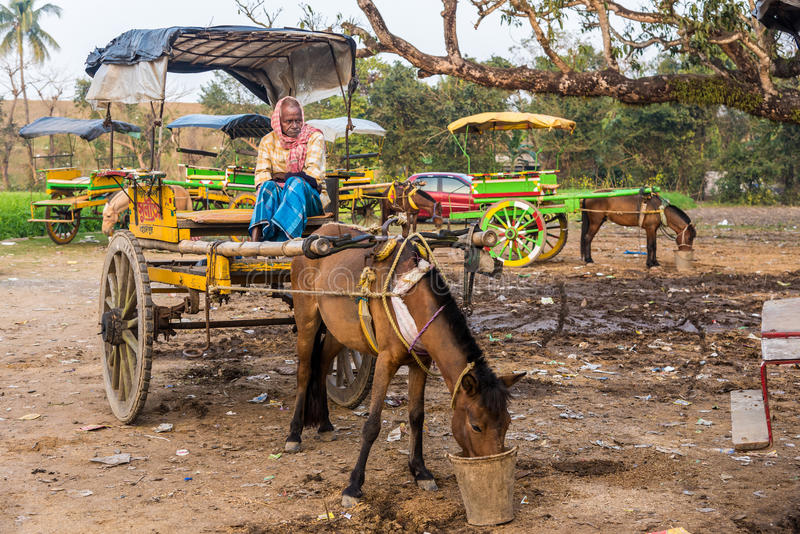 Vintage horse cart and coachman. MURSHIDABAD, INDIA - JANUARY 23: An Indian coachman waits for passengers on his horse cart on January 23, 2016 in Murshidabad stock image