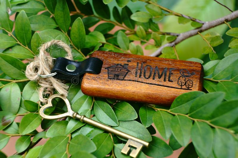 Vintage house key with wooden home keyring on green leaf background, property concept, copy space. Vintage house key with classic wooden home keyring on green stock photos