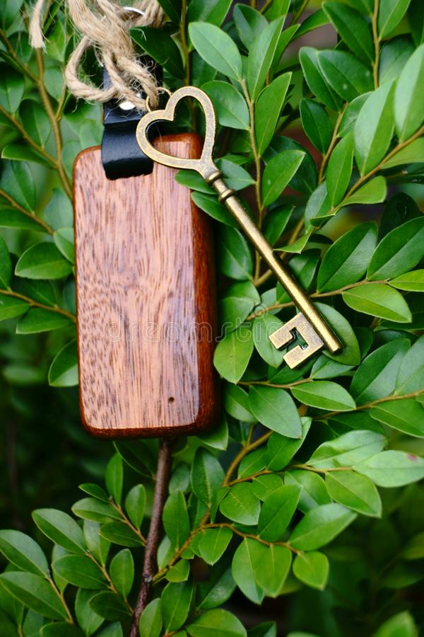 Vintage house key with wooden home keyring on green leaf background, property concept, copy space. Vintage house key with classic wooden home keyring on green stock images