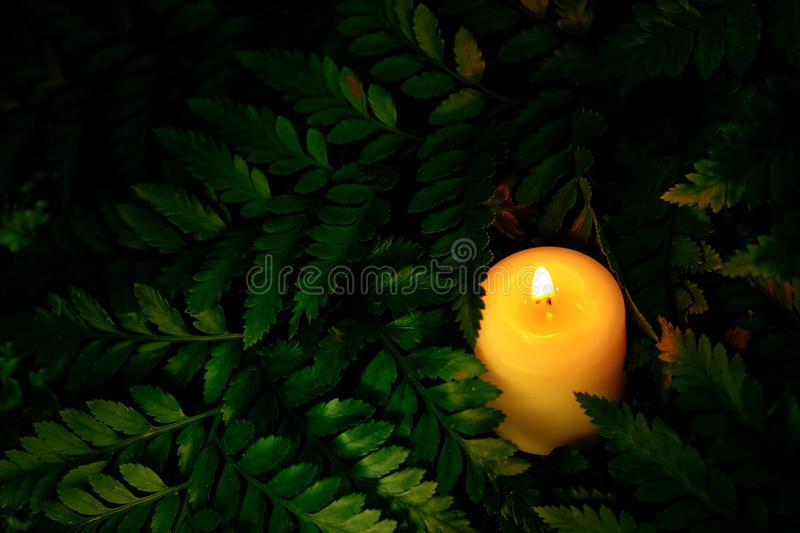 Vintage image style on little white candle lies on green leaves royalty free stock photography
