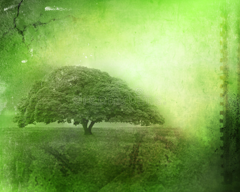Vintage image of a tree in the field stock images
