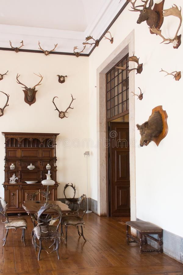 Vintage interior hunting room. Old castle. stock photo