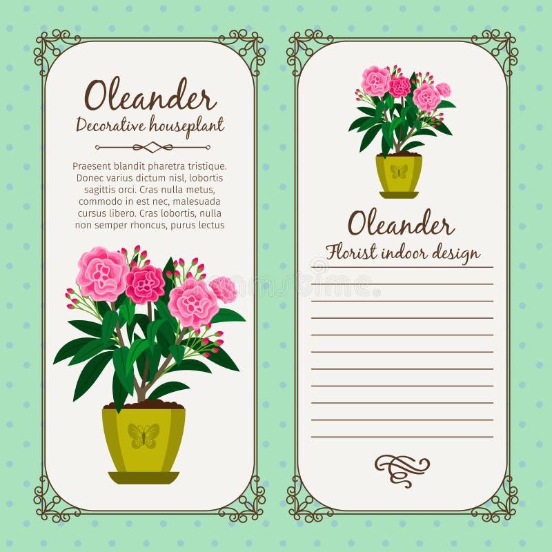 Vintage label with flower oleander royalty free illustration
