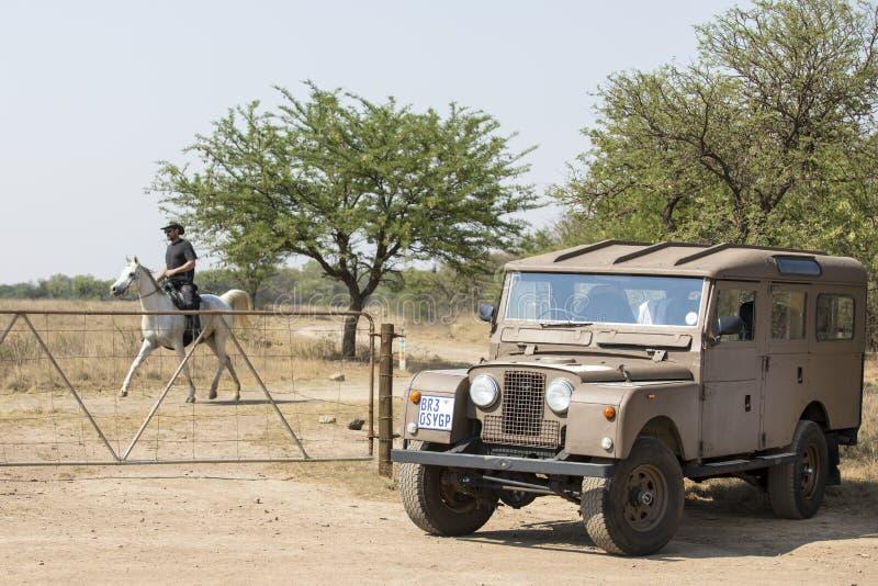 Vintage Land Rover e cavaleiro em seu cavalo fotografia de stock