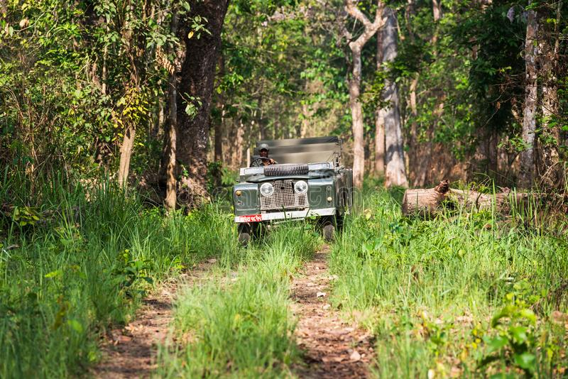 Vintage Land Rover Series II in Chitwan jungle, Nepal. CHITWAN NATIONAL PARK, NEPAL - CIRCA MAY 2019: A vintage Land Rover Series II is being driven in Chitwan stock image