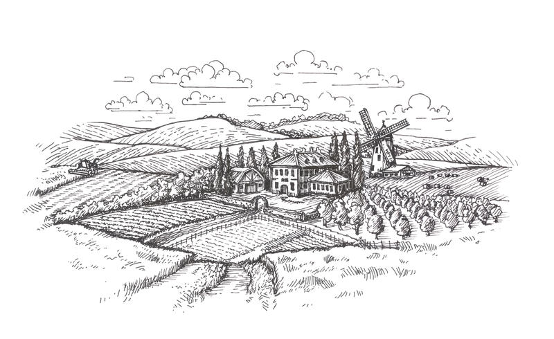 Vintage landscape. Farm, agriculture or wheat field sketch royalty free illustration