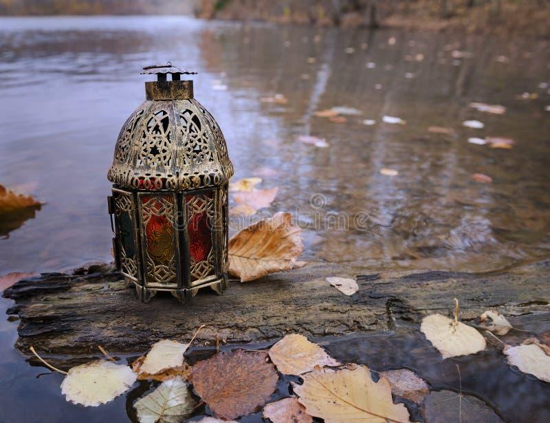 Vintage lantern on the tree in the autumn lake royalty free stock photo