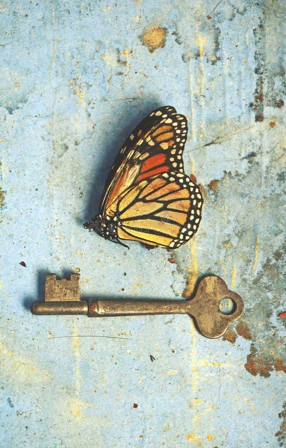 Vintage leeft nog steeds dode vlinder en sleutel op een vette gekleurde achtergrond royalty-vrije stock foto